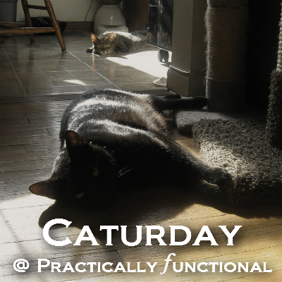 Caturday @ Practically Functional: