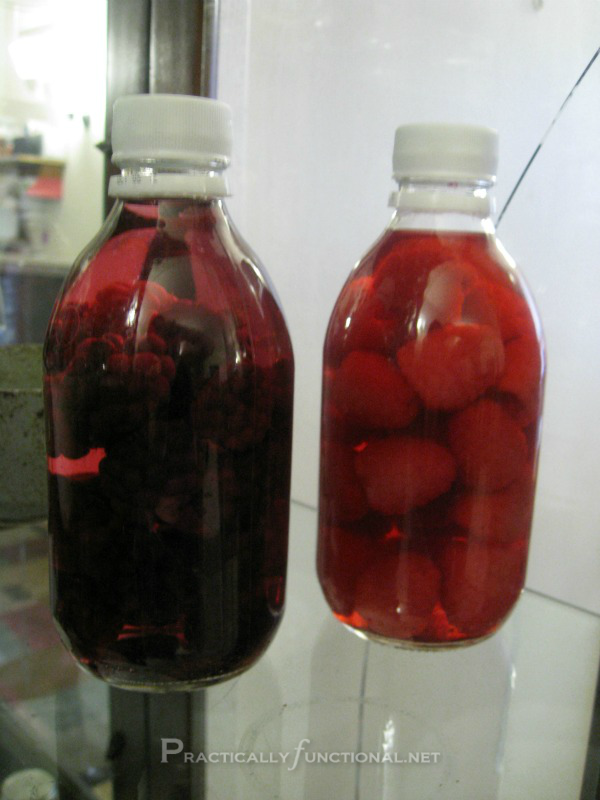 Infused Vodka: Day 3