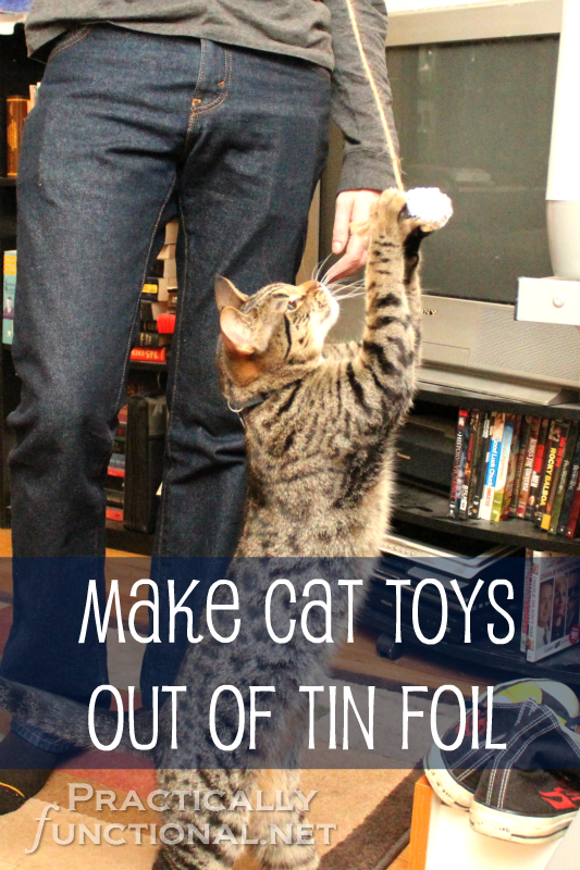 Save Our Cats Kittens Sensibly Socks