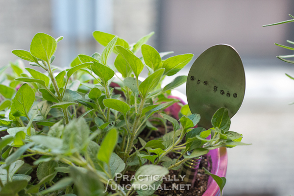 DIY Hammered Spoon Garden Markers