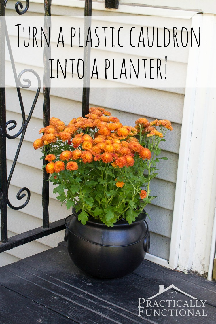 Turn A Plastic Cauldron Into A Planter! Perfect for mums on the front porch!