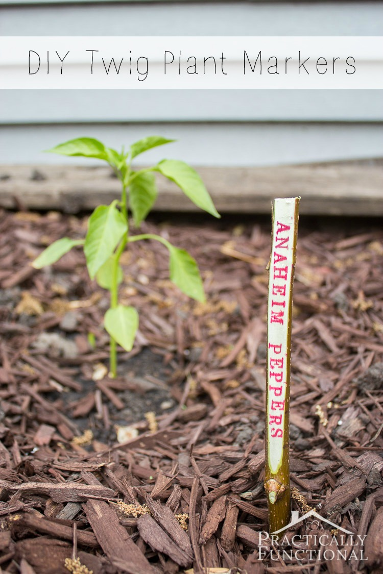 Turn twigs into plant markers for your garden! So easy and so cute!