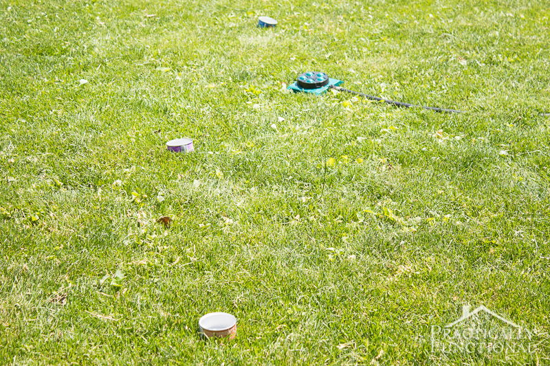 How Long To Water Your Lawn 2