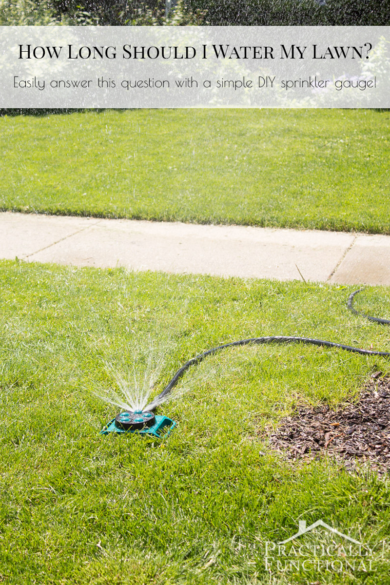 "Make a simple DIY sprinkler gauge to figure out how long to leave the sprinkler running on your lawn to get the recommended 1"" of water per week!"