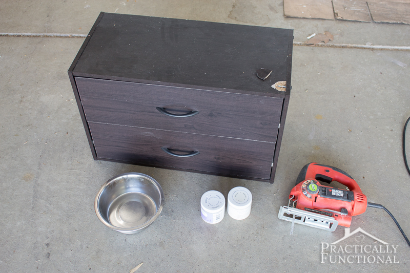 Single Small Dog Bowl Stand