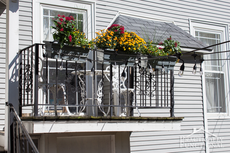 Add flowers to planter boxes to add pops of color to a space