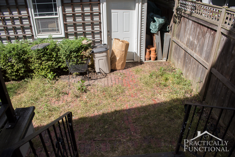 Patio before, full of weeds