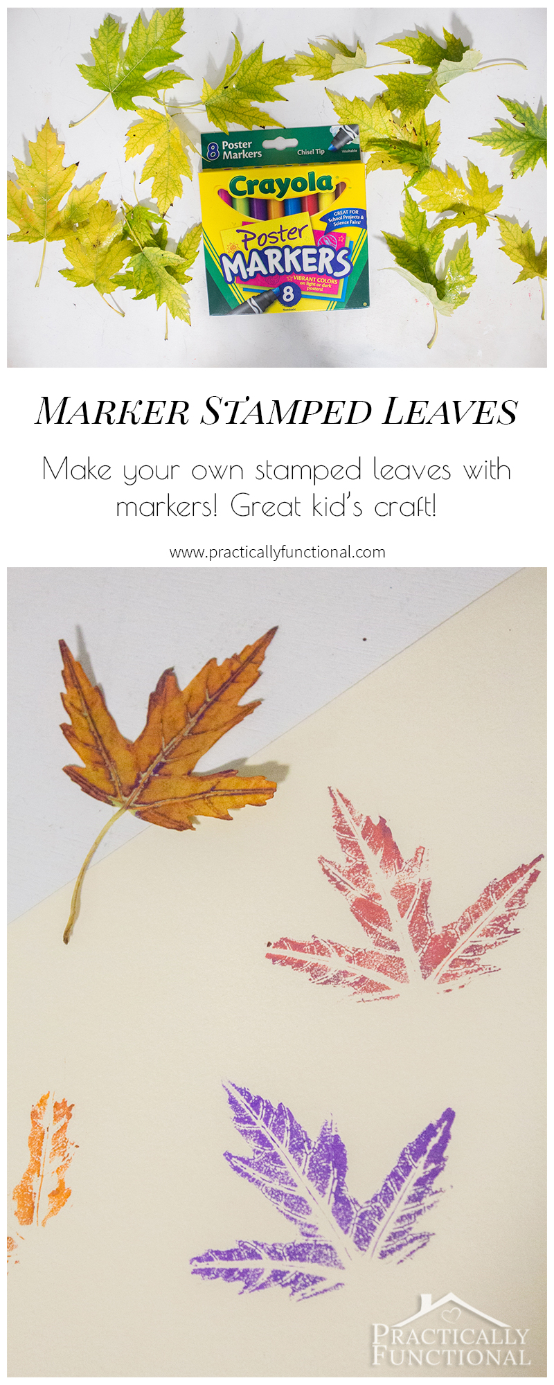 Use markers instead of paint to stamp with real leaves! Way less messy and you can see a lot more detail in the leaves!