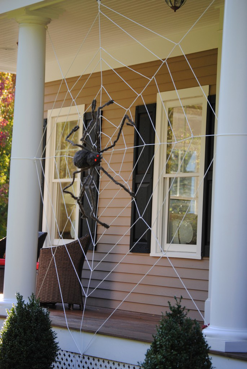 giant front porch spider web